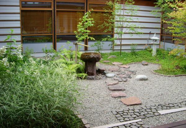 Japanilainen puutarha kasveineen.
